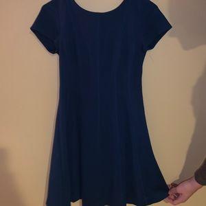 Banana Republic Paneled Fit-and-Flare Dress (Blue)